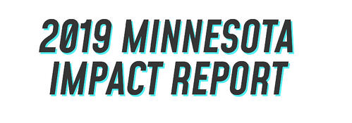 Minnesota Digital Fundraising Impact
